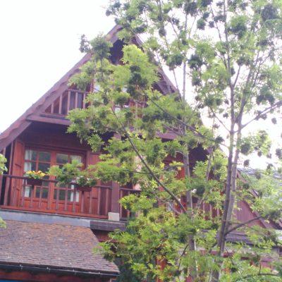 Fachada casa Mateo