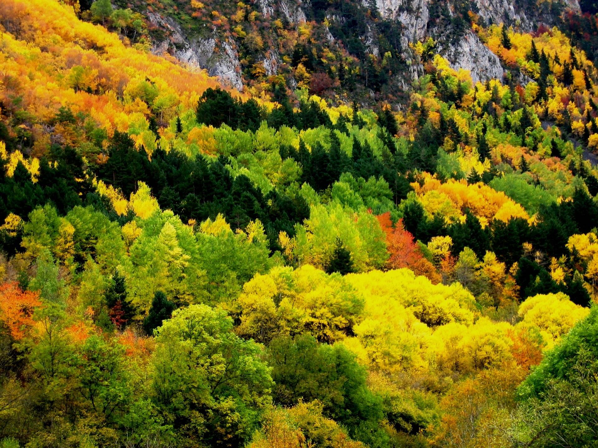Casa mateo otoño