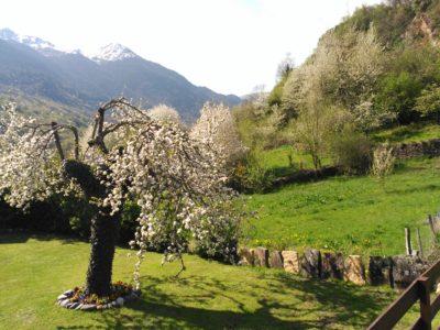 Noticias sobre turismo rural y el valle de ar n - Casas rurales valle de aran ...